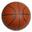 worldofbasketball.org